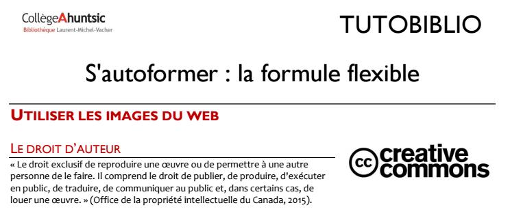 TUTOBIBLIO-Utiliser_les_images_du_web,_2016