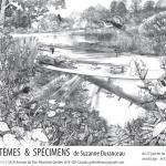 ÉCOSYSTÈMES & SPÉCIMENS – Exposition de Suzanne Durance, enseignante en graphisme